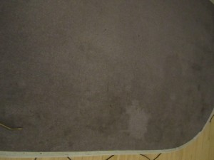 Carpets 001
