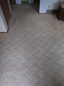 Carpets 052